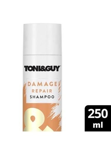 Toni&Guy Şampuan Yıpranmış Saçlar Için 250 Ml 79400204370 Renksiz